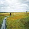 Thumbnail image for Erämaamatkailu – Matkailua Lapin luonnossa