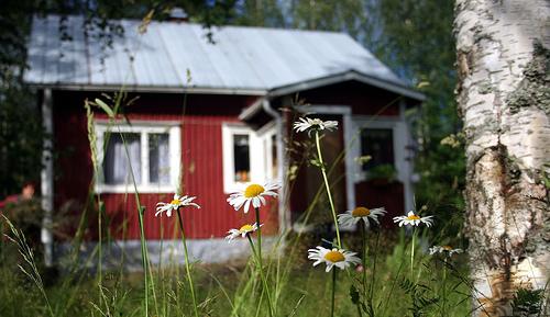 vuokrataan mökki kesäksi pirkanmaalta Nurmes