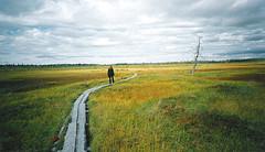 Erämaamatkailu lapissa luonnon keskellä source:http://www.flickr.com/photos/30096635@N03/3661440951/
